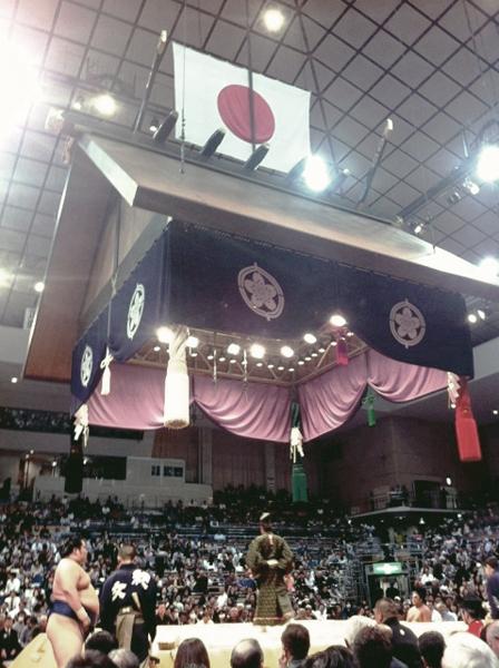 《25名限定》椅子A席にて観戦!大相撲5月場所と高砂部屋朝稽古を見学