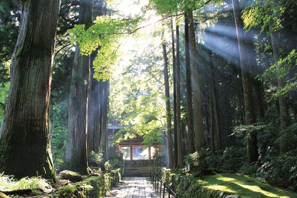 地元の神社へ!話題の「富山県ご朱印集め」の旅!