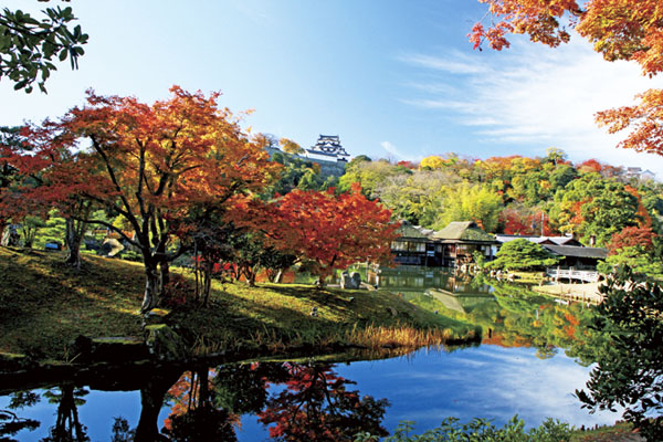 彦根城と鶏足寺へ行こうよう!