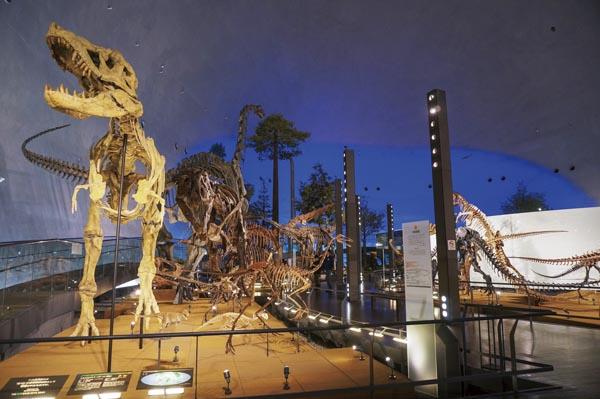 冬の福井で満喫!あわら温泉「まつや千千」と 恐竜博物館を巡る!
