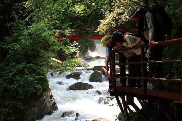 毎年恒例!小坂のんびり 滝めぐりハイキング