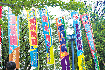【日帰りプラン】大相撲三月場所観戦ツアー