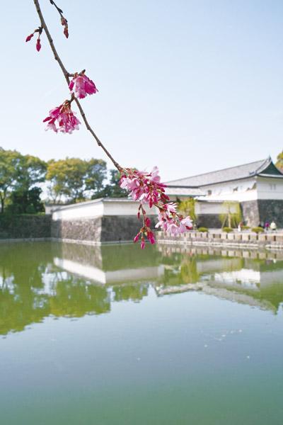 【3月出発】平成最後の春季皇居乾通り一般公開
