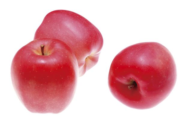お土産いっぱい 秋の収穫祭ミステリーの旅 【10月出発】